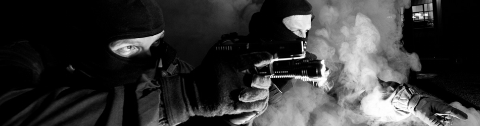 Authorised Firearms Officers: Decision Making and Expertise.